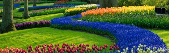 Realizzazione e manutenzione di Giardini e Parchi