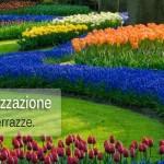 Progettazione e realizzazione di parchi, giardini e terrazze