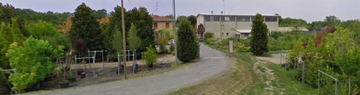Vivaio Attilio Neri - Gattatico - Reggio Emilia
